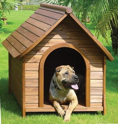 dog house made of wpc